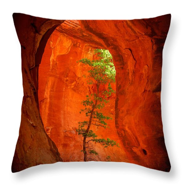 Boynton Canyon 04-343 Throw Pillow by Scott McAllister