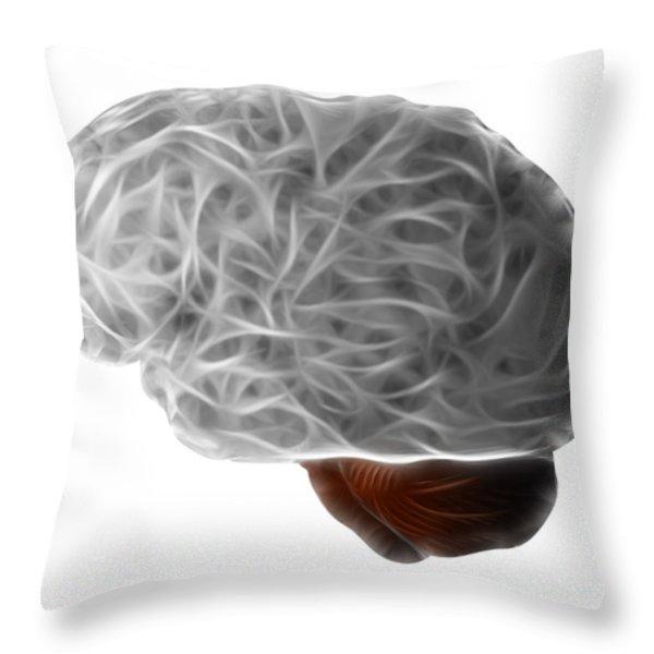Brain Throw Pillow by Michal Boubin