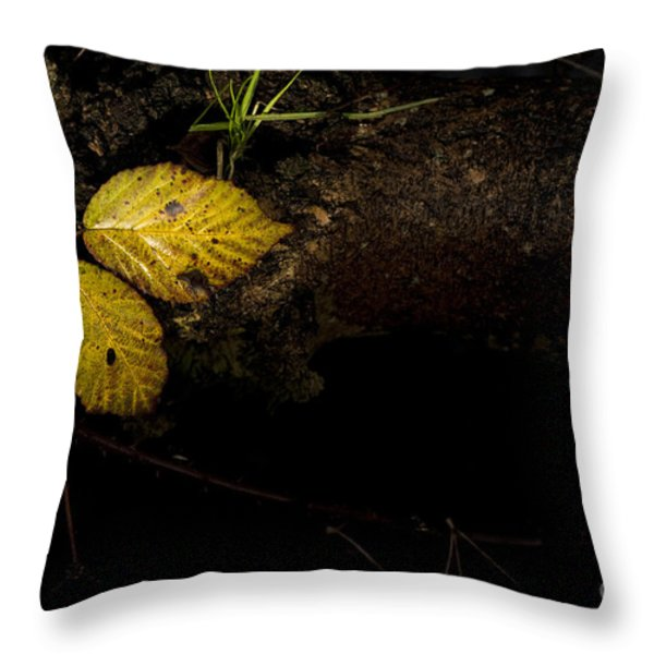 Bramble Tree Throw Pillow by Anne Gilbert