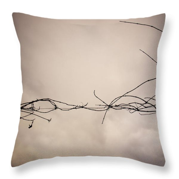 Branches Against A Winter Sky Throw Pillow by Vivienne Gucwa