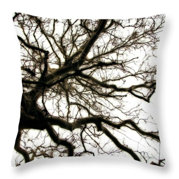 Branches Throw Pillow by Michelle Calkins