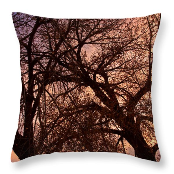Branching Out at Sunset Throw Pillow by James BO  Insogna