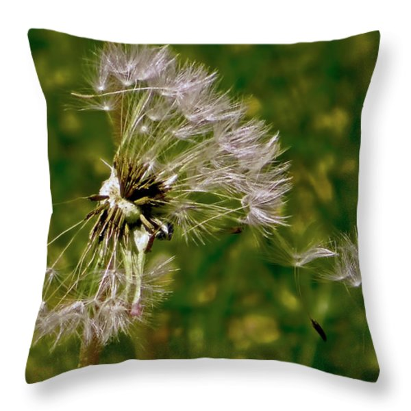 Breaking Away Throw Pillow by Rona Black