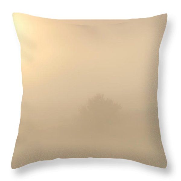 Breaking Through Throw Pillow by Mike  Dawson