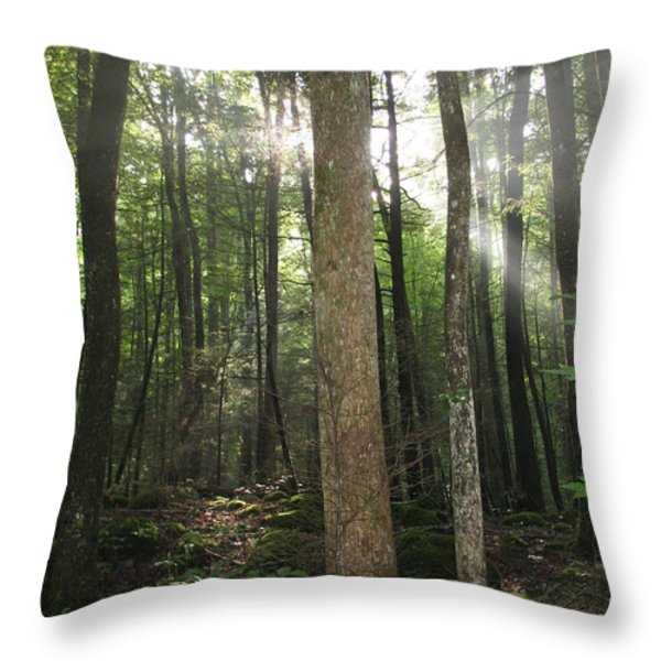 Breakthrough Sun Throw Pillow by Shannon Louder