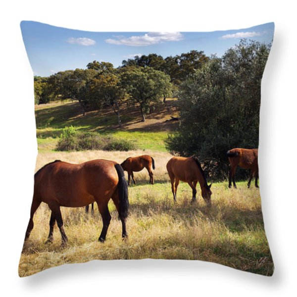 Breed of Horses Throw Pillow by Carlos Caetano