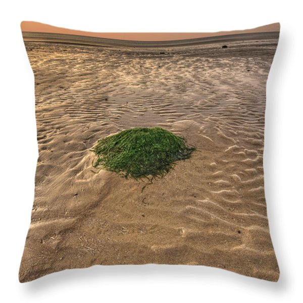 Breeze Of Dawn Throw Pillow by Evelina Kremsdorf