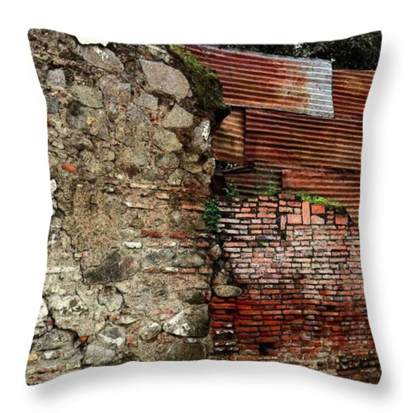 Brick And Tin Wall Throw Pillow by Ellen Cannon