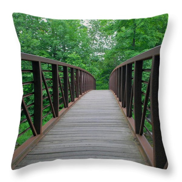 Bridging The Gap Throw Pillow by Lisa  Phillips