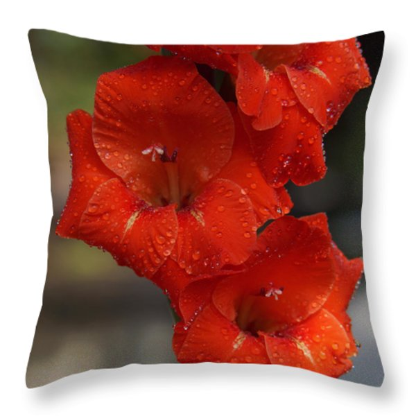 Bright Glad Throw Pillow by Kim Pate