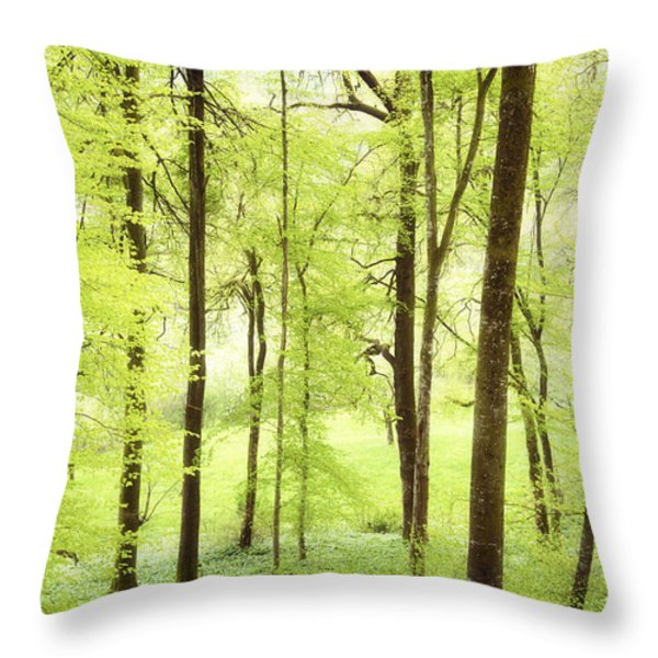 Bright Green Forest In Spring With Beautiful Soft Light Throw Pillow by Matthias Hauser