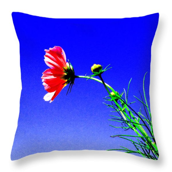 Bright Pink Bloom Throw Pillow by Tina M Wenger