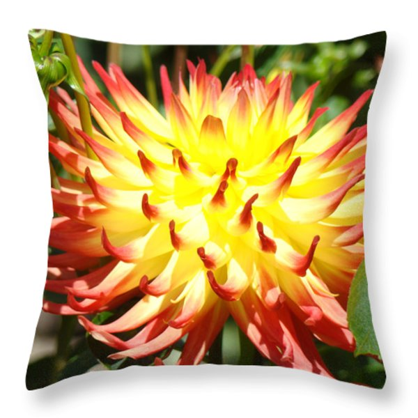 Bright Red Yellow Dahlia Flower Art Print Throw Pillow by Baslee Troutman