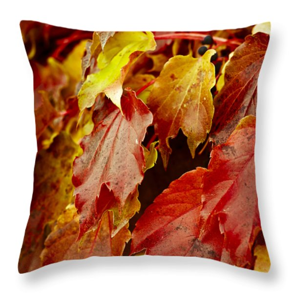 Brightest Before The Fall Throw Pillow by Christi Kraft