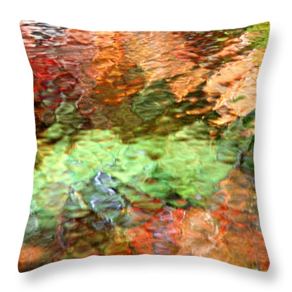 Brilliance Throw Pillow by Christina Rollo