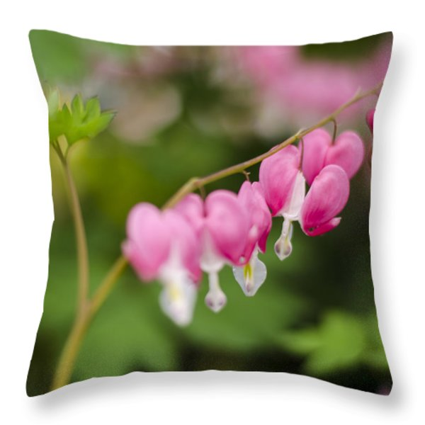 Broken Heart Throw Pillow by Heather Applegate