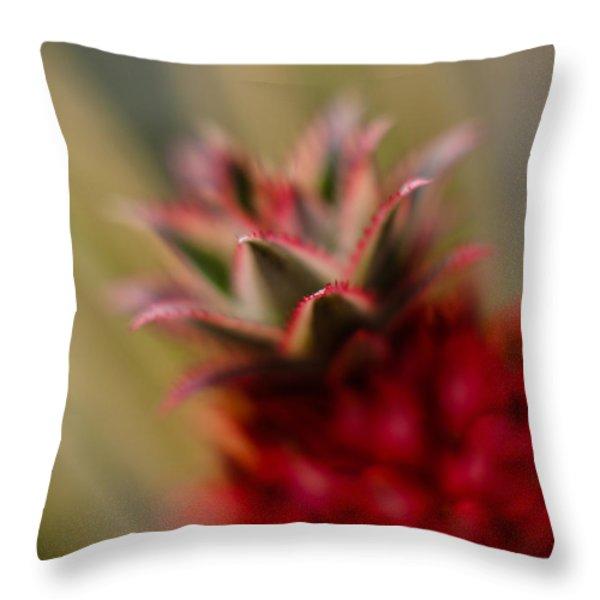 Bromeliad Crown Throw Pillow by Mike Reid