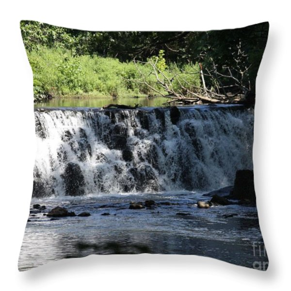 Bronx River Waterfall Throw Pillow by JOHN TELFER