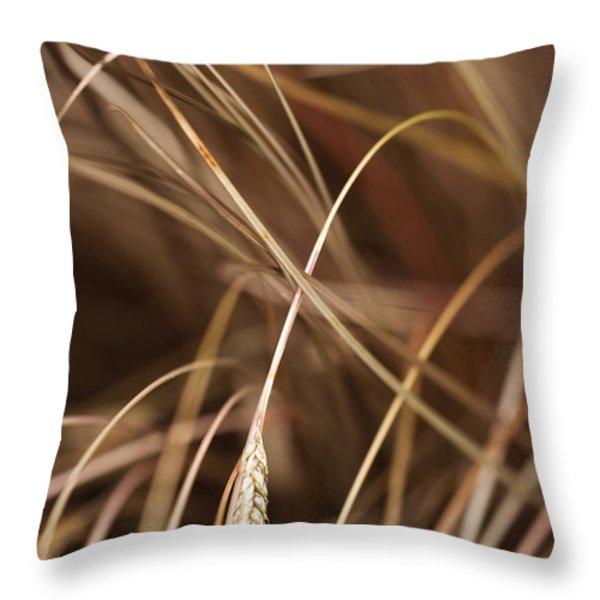 Bronze Throw Pillow by Anne Gilbert