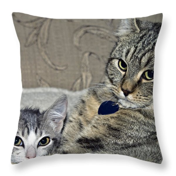 Brothers Throw Pillow by Susan Leggett