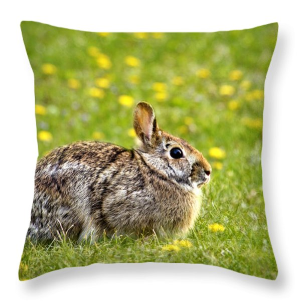 Brown Bunny in Green Grass Throw Pillow by Christina Rollo
