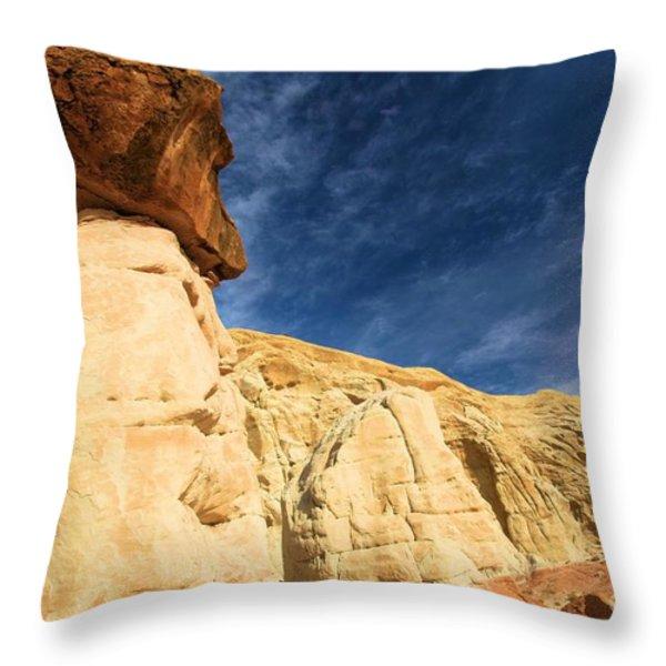 Brown Cap Throw Pillow by Adam Jewell