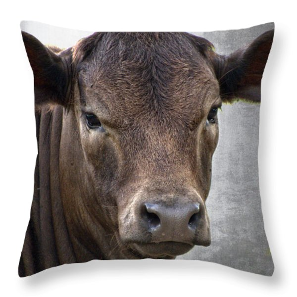 Brown Eyed Boy - Calf Portrait Throw Pillow by Ella Kaye Dickey