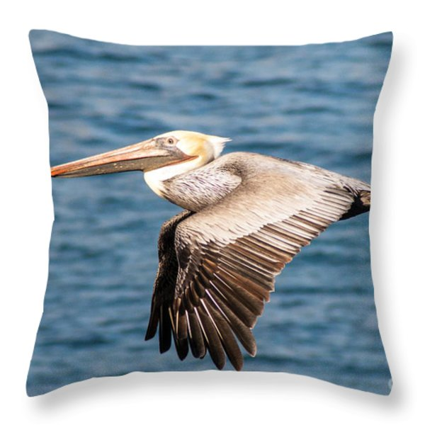 Brown Pelican Flying Throw Pillow by Darleen Stry