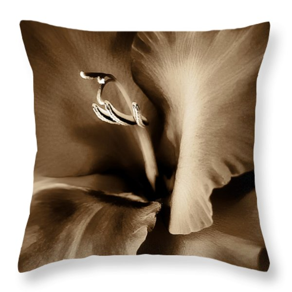 Brown Velvet Gladiolus Flower Throw Pillow by Jennie Marie Schell