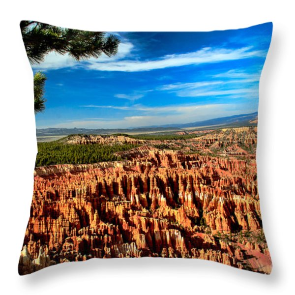 Bryce Throw Pillow by Robert Bales