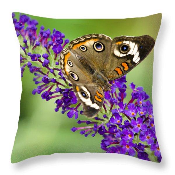 Buckeye Butterfly On Purple Flowers Throw Pillow by Saija  Lehtonen