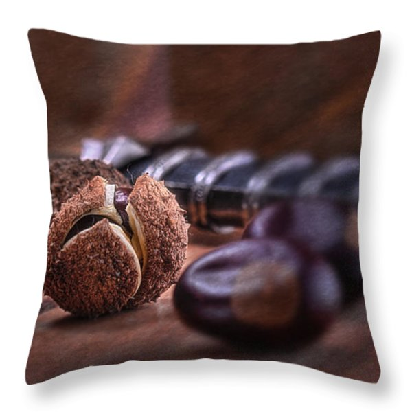 Buckeye Nut Still Life Throw Pillow by Tom Mc Nemar