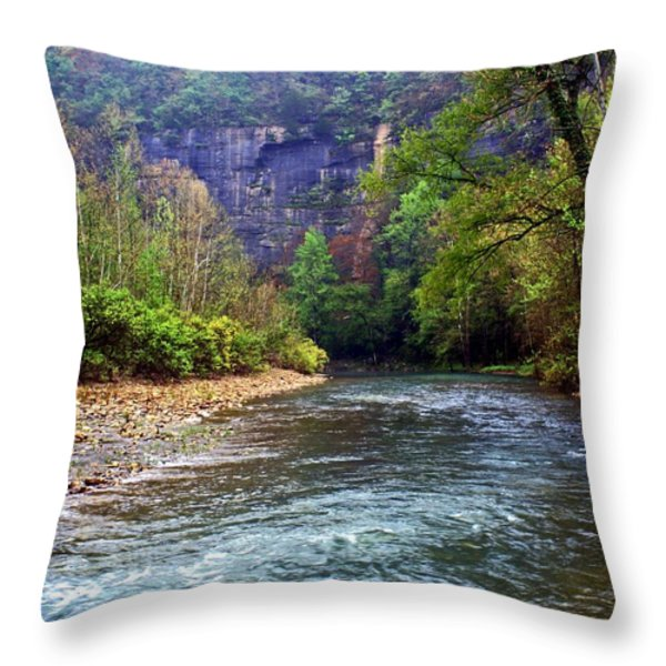 Buffalo River Downstream Throw Pillow by Marty Koch