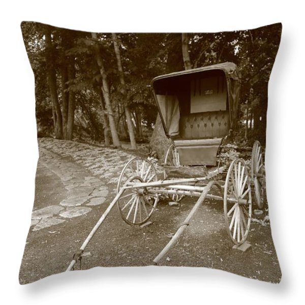 buggy Throw Pillow by Dwight Cook