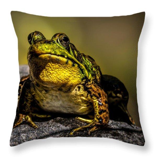Bullfrog Watching Throw Pillow by Bob Orsillo