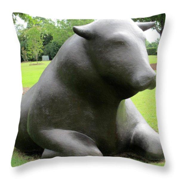 Bulls 5 Throw Pillow by Randall Weidner