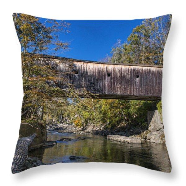Bulls Bridge Throw Pillow by John Greim