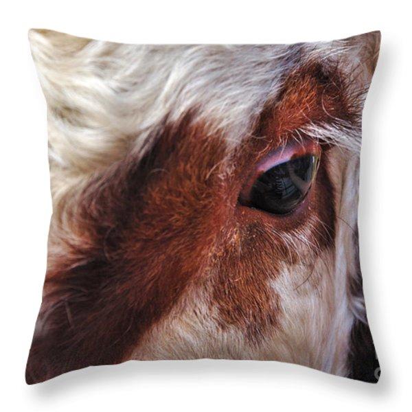 Bull's Eye Throw Pillow by Kaye Menner