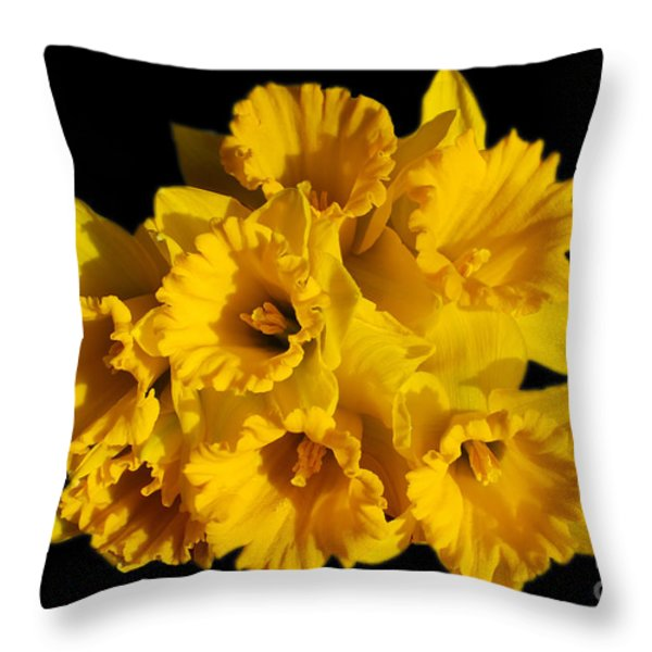 Bunch of Daffodils Throw Pillow by JM Braat Photography