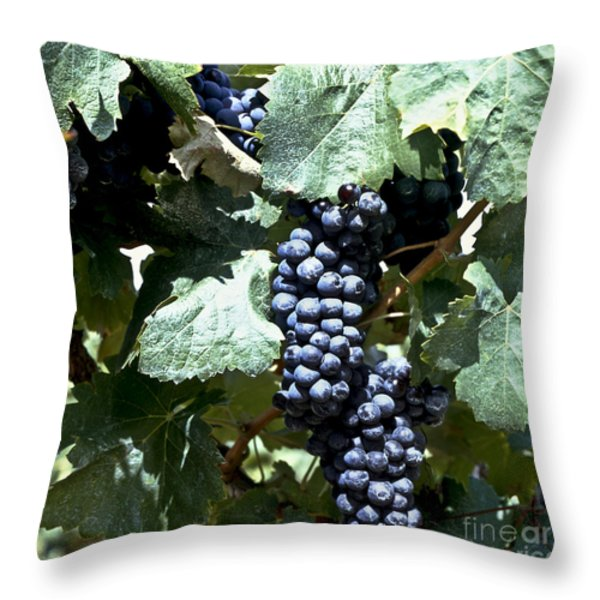 Bunch Of Grapes Throw Pillow by Heiko Koehrer-Wagner