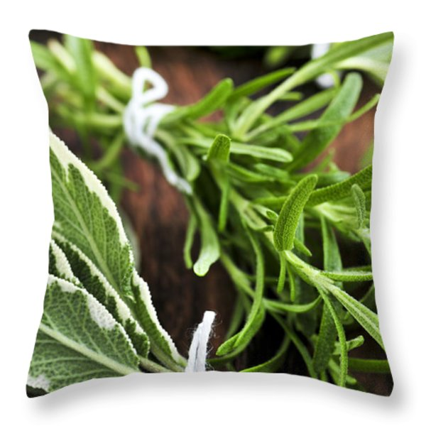 Bunches of fresh herbs Throw Pillow by Elena Elisseeva
