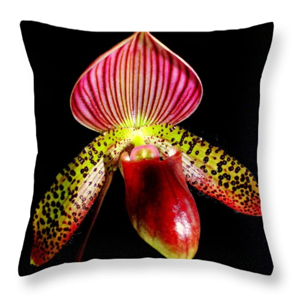Burgundy Lady Slipper Throw Pillow by KAREN WILES