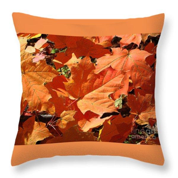 Burnt Orange Throw Pillow by Ann Horn