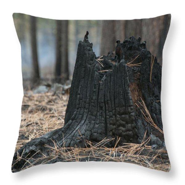 Burnt Tree Trunk Throw Pillow by Juli Scalzi