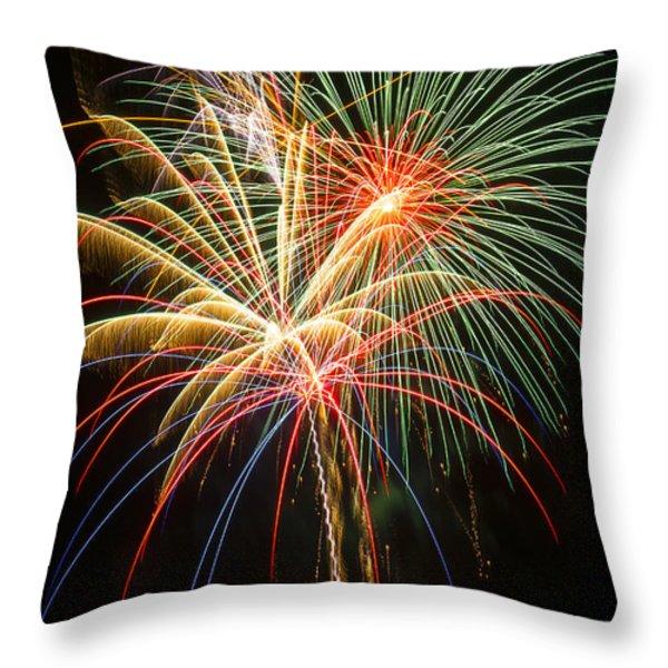 Bursting in air Throw Pillow by Garry Gay