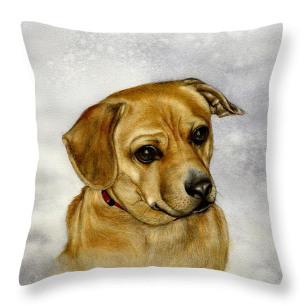 Buster Throw Pillow by Nan Wright
