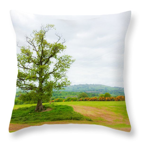 But Only God Can Make a Tree Throw Pillow by Semmick Photo