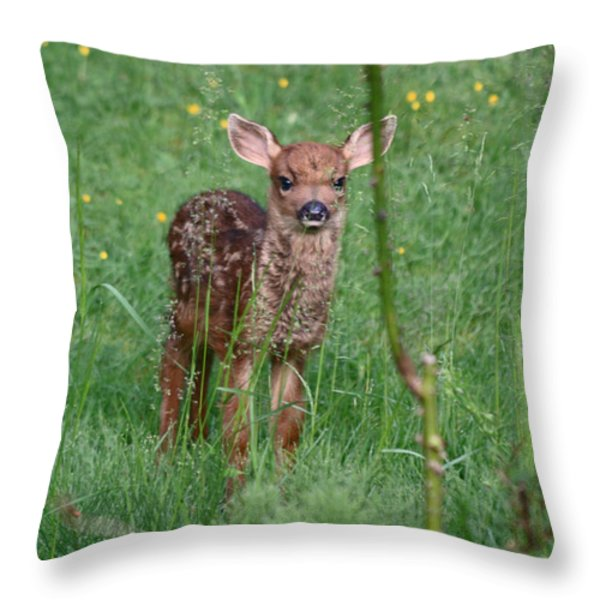 But That Rose Was So Tasty Throw Pillow by Kym Backland