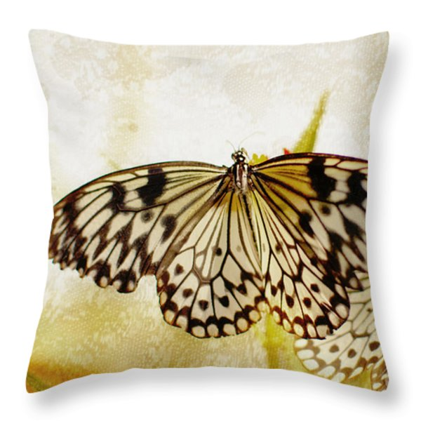 Butterflies On Lace Throw Pillow by Floyd Menezes