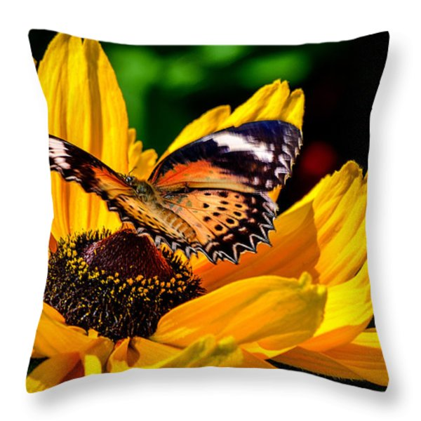 Butterfly And Bloom Throw Pillow by Julie Palencia